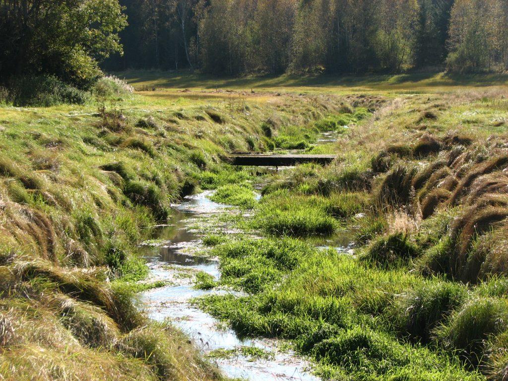 natürliches Wassergerinne
