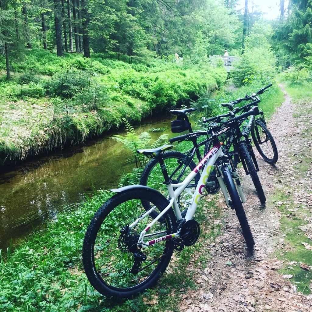 Natur_Radfahren