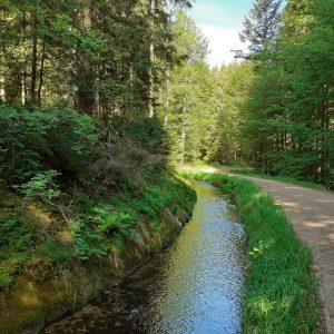 Wanderwege in der Gemeinde Haidmühle