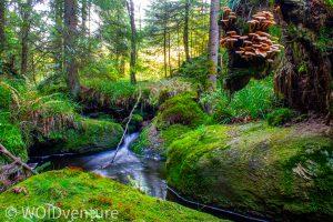 Wasserfälle III