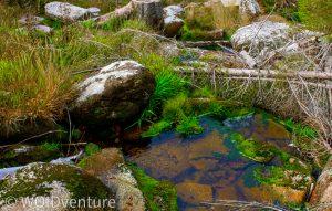 Wasserfälle I