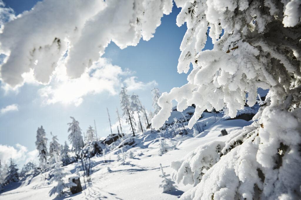 herrrliche Winterlandschaft